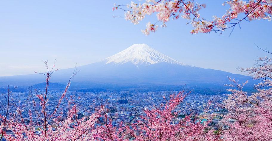 Fuji Bergwelt und Natur in Japan